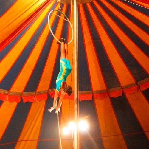 Circo y Animación - MaManager