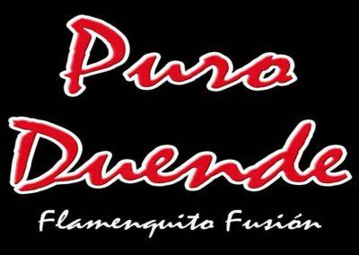 PURO DUENDE